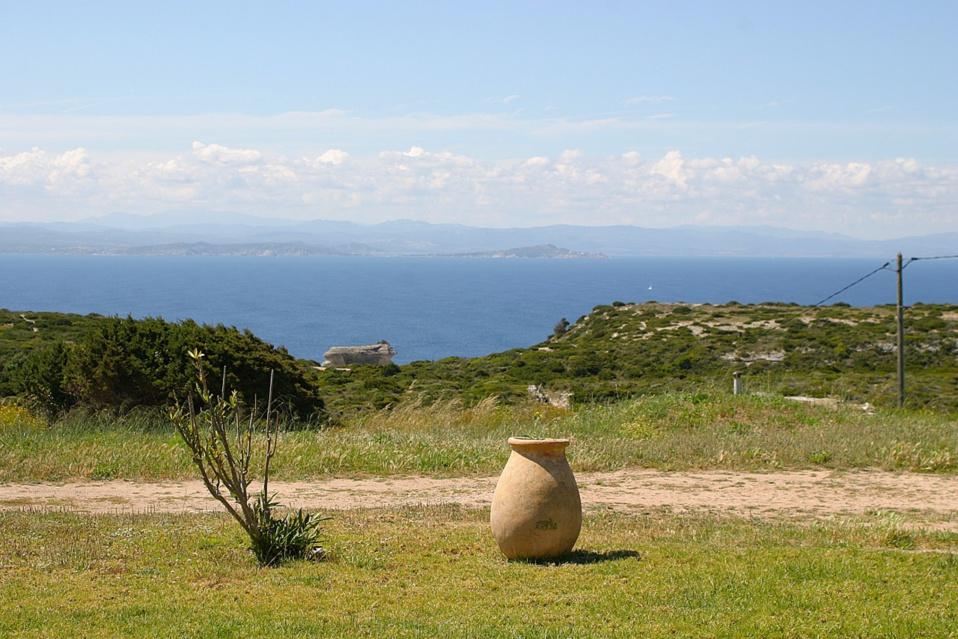 La vue depuis la location Pertusato